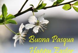 vimercati-buona-pasqua